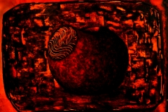 Forbidden Fruit (1987)