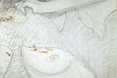woman, revealing